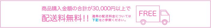 30,000円以上お買い上げで送料無料